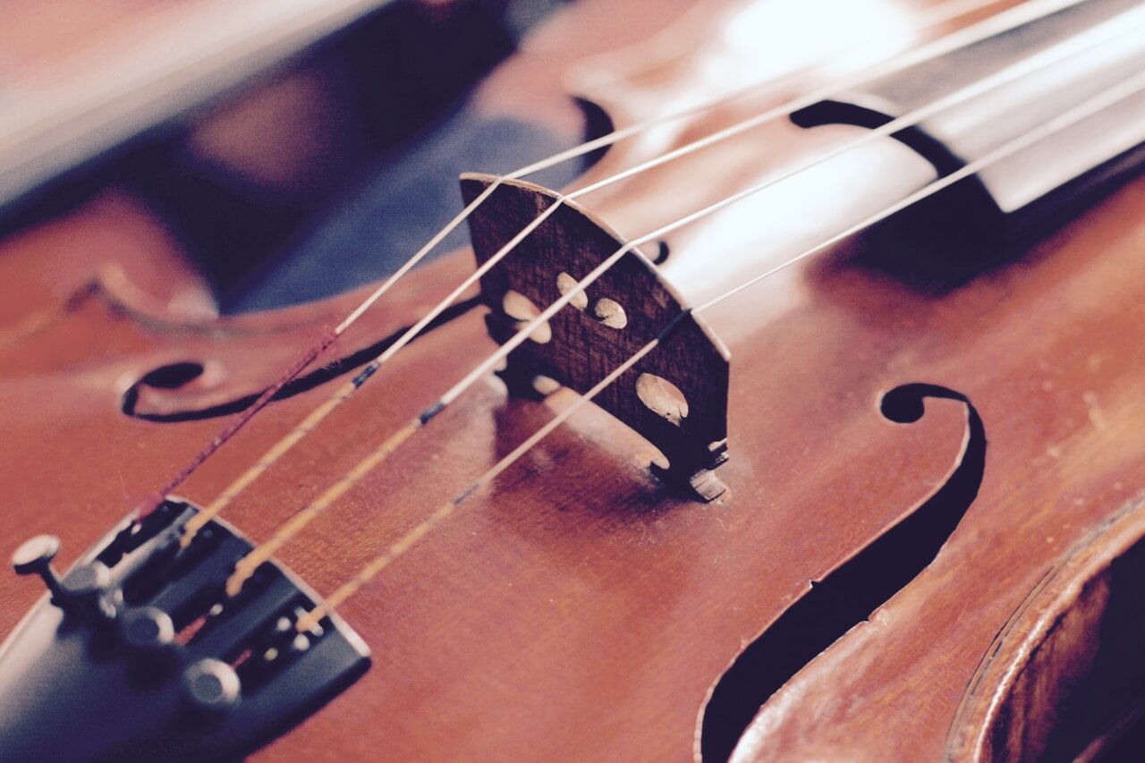 Contact Professional Ensemble Musicians located in Sydney, Australia. Contact us or leave a message for inquiries, exact quote & availability